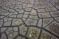Drought patterns in muddy soil, Camargue, France