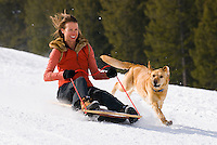 A young woman rides a sled with her dog in Jackson, Wyoming.