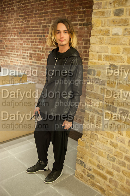 DANIEL HATTON, - Come and See, Jake and Dinos Chapman, Serpentine Sackler Gallery. Serpentine Galleries Special Private View, 29 November 2013