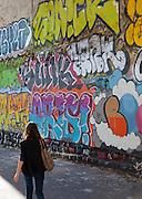 Street art or graffiti, in the Belleville district of Paris, France