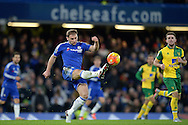 Branislav Ivanovic of Chelsea in action. Barclays Premier league match, Chelsea v Norwich city at Stamford Bridge in London on Saturday 21st November 2015.<br /> pic by John Patrick Fletcher, Andrew Orchard sports photography.