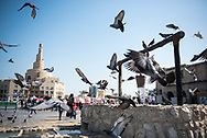 Pigeons take flight in Souk Waqif in Doha, Qatar. The building with a spiral design in the background is the Abdullah Bin Zaid Al Mahmoud Islamic Cultural Center.