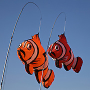 Colorful clown fish, along with kites of all sizes and shapes, are on display at the annual Smithsonian Kite Festival on the grounds of the Washington Monument in Washington, DC