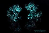 Asian Ice Dragons