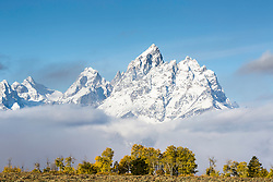 """A bit of autumn and a bit of winter, a very grand Grand Teton rises above the valley of Jackson Hole in Grand Teton National Park<br /> <br /> For production prints or stock photos click the Purchase Print/License Photo Button in upper Right; for Fine Art """"Custom Prints"""" contact Daryl - 208-709-3250 or dh@greater-yellowstone.com"""