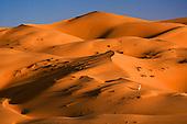 ARABIA - in Lawrence's footsteps