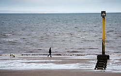 Portobello, Scotland, UK. 28 March, 2020. On the first weekend of the coronavirus lockdown the public were outdoors exercising and maintaining social distancing along Portobello beachfront promenade. Man walking a dog along the seashore. Iain Masterton/Alamy Live News