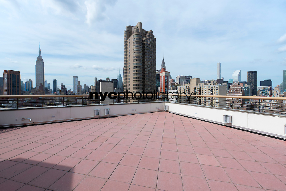 Roof Deck at 630 1st Avenue