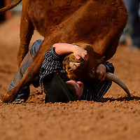 Bryce McCormick tackles his calf to the ground during the steer wrestling portion of the New Mexico High School Rodeo Association state finals on Saturday at Red Rock Park in Gallup.