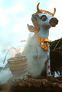 INDONESIA, BALI, FESTIVALS Cremation ceremony; a large wooden bull  in which the body was carried is burned with the body inside