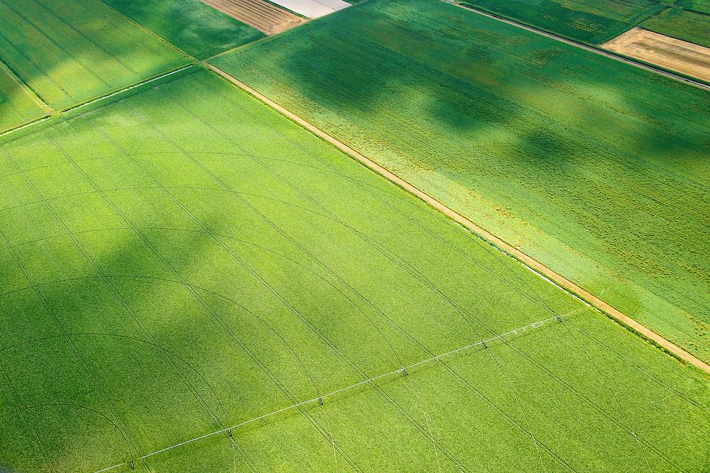 Nederland, Drenthe, Gemeente Borger-Odoorn, 27-08-2013; Eerste Exloermond, Noorderboerplaatsen. Veenkoloniaal landschap met beregeningsinstallatie voor de gewassen.<br /> Peat landscape, with irrigation system for crops (East Netherlands).<br /> luchtfoto (toeslag op standaard tarieven);<br /> aerial photo (additional fee required);<br /> copyright foto/photo Siebe Swart.