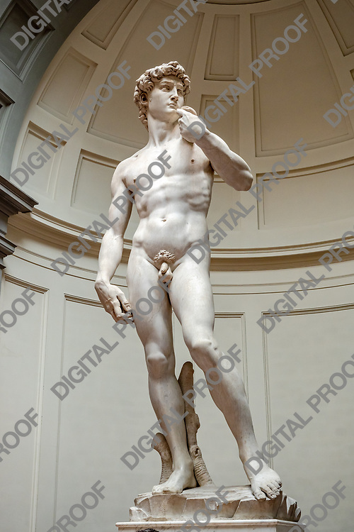 Statue of David (David by Michelangelo) in the Galleria della accademia, frontal shot entire body. Florence, Italy May 12, 2019.