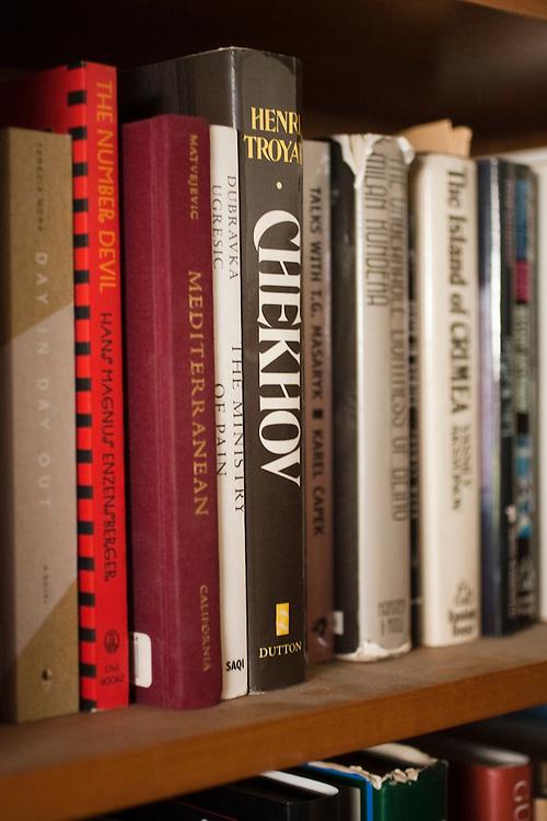Michael Heim teaches Slavic language and literature at UCLA and translates literature. Books that Heim has translated.