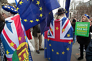 Anti Brexit protesters wearing European Union flags in Westminster outside Parliament on 8th January 2020 in London, England, United Kingdom. With a majority Conservative government in power and Brexit day at the end of January looming, the role of these protesters is now to demonstrate in the hope of the softest Brexit deal possible.