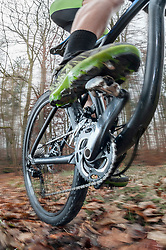 Low section of mountain biker speeding on forest track