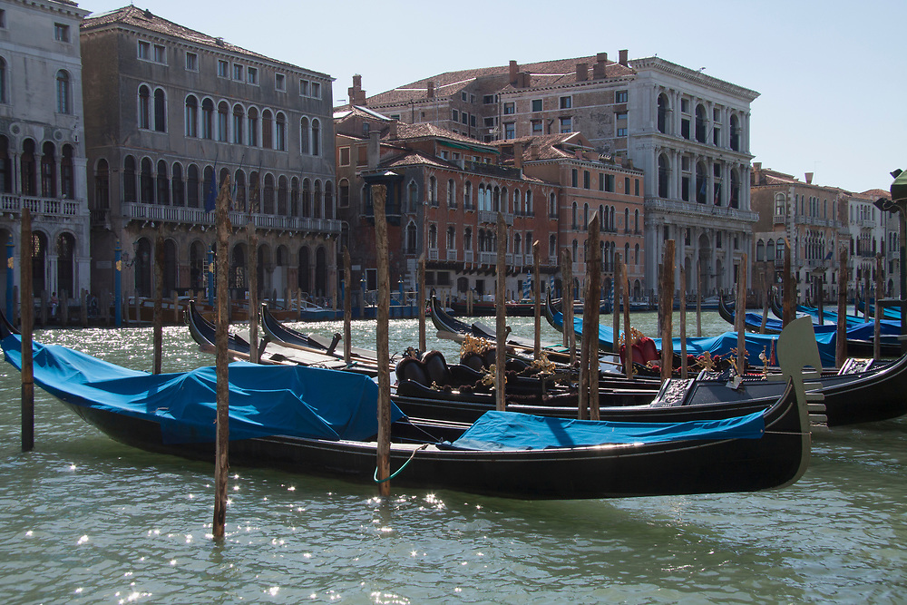 Gondolas docked along the Grand Canal during the day in Venice