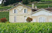 chateau pavie saint emilion bordeaux france