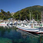 Fishing boats moored in Futo harbor, Izu Peninsula, Japan