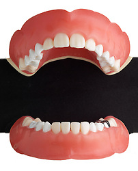 teeth 004 Teeth Dentures