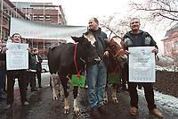 22 JAN 2001, MAINZ/GERMANY:<br /> Landwirte und Bauern moechten den Kanzler zum Auftakt seiner Rheinland-Pfalz Reise vor der Staatskanzlei ihre Kuehe schenken und damit ihren Unwillen gegenueber den Massnahmen der Regierung zur BSE Bekaempfung kundtun, Staatskanzlei Rheinland-Pfalz<br /> IMAGE: 20010122-01/01-04<br /> KEYWORDS: Rind, Kuh, Bauer, Landwirt, BSE, Demonsration, Demonstrant, Demo, Kanzlerreise