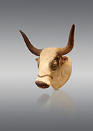 Minoan  bull's head rhython libation vessel, Machlos 1500-1450 BC; Heraklion Archaeological  Museum, grey background. .<br /> <br /> If you prefer to buy from our ALAMY PHOTO LIBRARY  Collection visit : https://www.alamy.com/portfolio/paul-williams-funkystock/minoan-art-artefacts.html . Type -   Heraklion   - into the LOWER SEARCH WITHIN GALLERY box. Refine search by adding background colour, place, museum etc<br /> <br /> Visit our MINOAN ART PHOTO COLLECTIONS for more photos to download  as wall art prints https://funkystock.photoshelter.com/gallery-collection/Ancient-Minoans-Art-Artefacts-Antiquities-Historic-Places-Pictures-Images-of/C0000ricT2SU_M9w