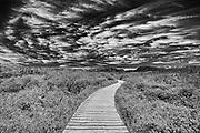 Boardwalk at Western Brook Pond<br />Gros Morne National Park<br />Newfoundland & Labrador<br />Canada<br />Gros Morne National Park<br />Newfoundland & Labrador<br />Canada
