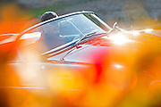 Image of an orange 1958 Porsche Speedster in the fall in Bellevue, Washington, Pacific Northwest