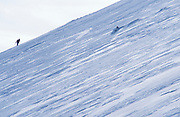 Skier, looking at snowy landscape, backpack, white, blue sky, steep slope