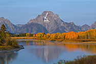 Dawn's first light highlights a full spectrum of fall colors reflecting in the Oxbow Bend of Grand Teton National Park.