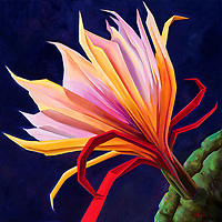 SOLD<br /> The Cereus cactus blooms for one night, unveiling a large fragrant blossom which fades with dawn. Here its fleeting beauty is captured, radiant in the midsummer moonlight.