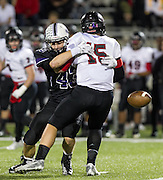 Cedar Ridge line backer Trysten Kincaid forces a quarterback fumble in the first half to set up a field goal in the first half against Bowie at Kelly Reeves Athletic Complex.  (LOURDES M SHOAF for Round Rock Leader)