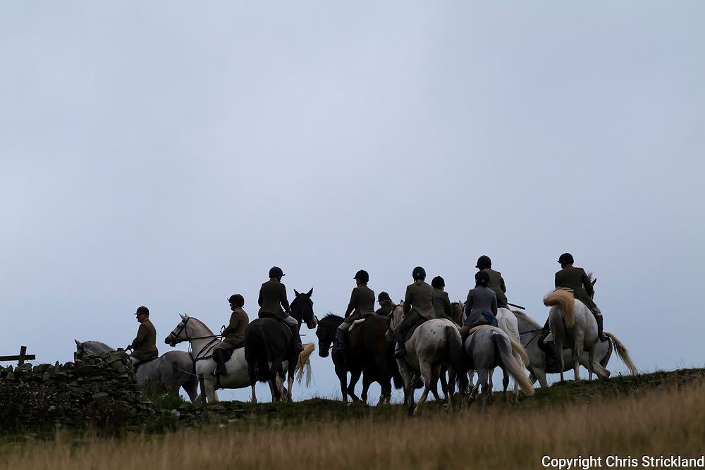 Roberton, Hawick, Scottish Borders, Scotland, UK. 11th September 2021. The Duke of Buccleuch Hunt, a mounted gun pack, carry out fox control duties on the hill farms of Hawick in the Scottish Borders.