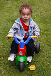 Young toddler in the garden on a tricycle,