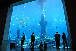 Atlantis hotel, Dubai. . Photo by: Stephen Lock/i-Images