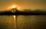 Foggy Sunrise over Rio Madre de Dios - Manu, Peru