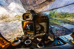 "Canon camera in floating blind, ""Secret Bird Pond"" near Trinity River Audubon Center, Great Trinity Forest, Dallas, Texas, USA."