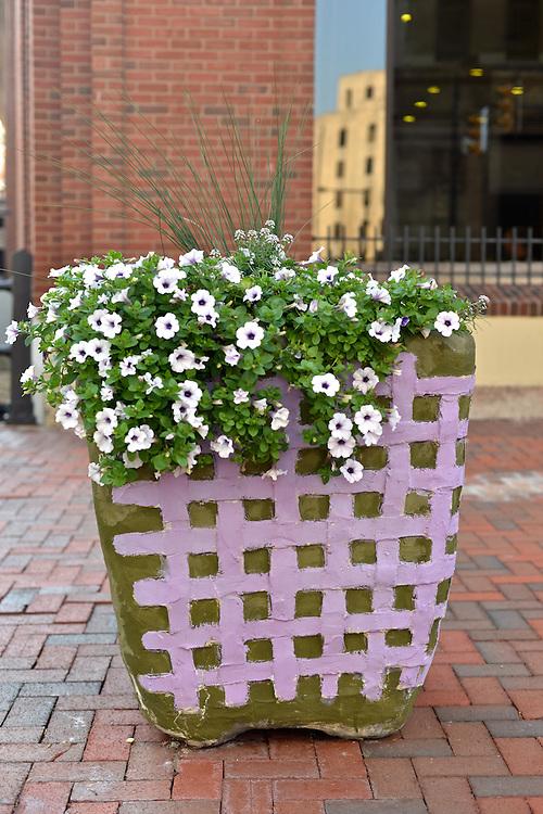 Downtown sidewalk planter with flowers.