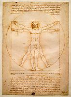 Italie, Venise, Gallerie dell'Accademia, Leonard de Vinci, L'homme de Vitruve // Italy, Venice, Gallerie dell'Accademia, Leonardo da Vinci, Vitruvian man