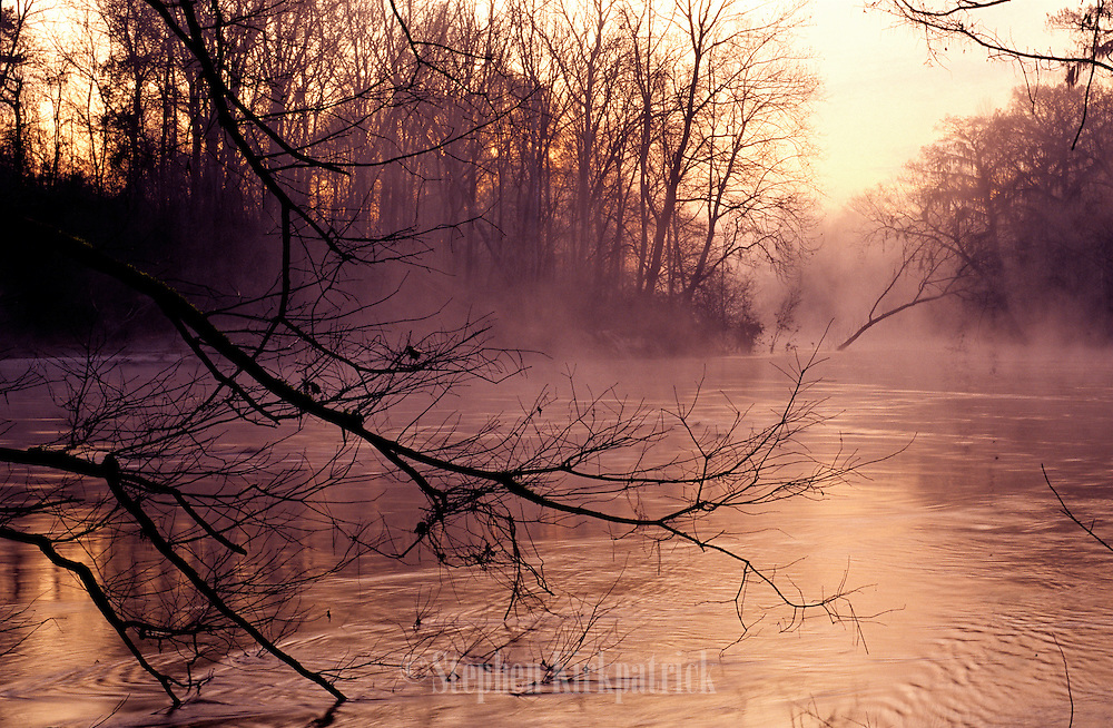 Foggy morning winter sunrise on the Chickasawhay River, Mississippi.