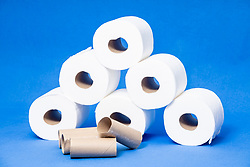 toilet tissue or toilet paper