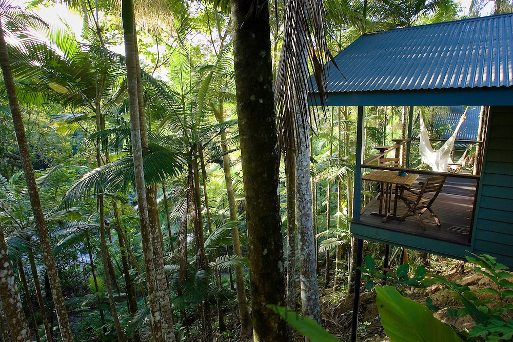 Silky Oaks Lodge in the treetops of Daintree Rainforest, Queensland, Australia