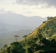 Tropical landscape near Jacmel, Haiti