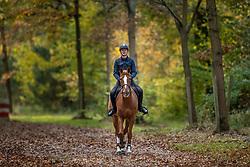 Verlooy Jos, BEL, Igor<br /> Eurohorse Stables - Grobbendonk 2020<br /> © Hippo Foto - Dirk Caremans<br /> 04/11/2020