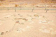 Leopard Temple a prehistoric cult site in the Uvda valley desert region, Negev, Israel. This site has been dates to have been dated to the Bronze age 6th Millennia BC and was in use for circa 4000 years. The name of the site is due to the finding of 16 animal figures 15 of them identified as [female] leopards and one as a hinted or dead ibex