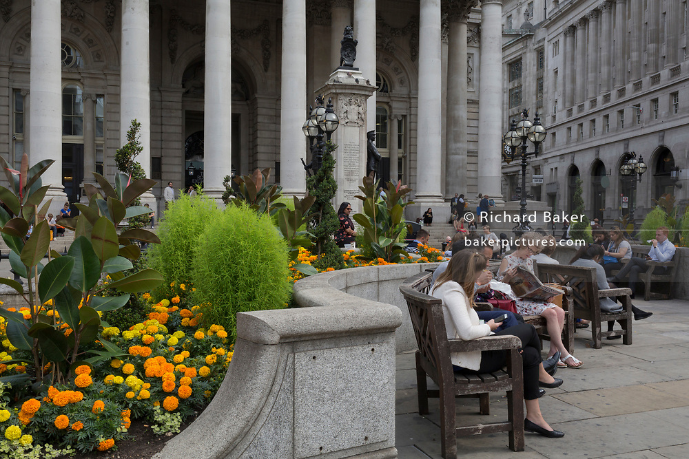 Yellow and orange marigolds in full bloom outside the Royal Exchange at Bank Triangle in the City of London - the capital's financial district, on 3rd September 2018, in London England. At the top of Doric and Ionic columns with their ornate stonework, powerfully strong lintels cross, bearing the load of fine artistry and carvings which feature the design by Sir William Tite in 1842-1844 and opened in 1844 by Queen Victoria whose name is written in Latin (Victoriae R). It's the third building of the kind erected on the same site. The first Exchange erected in 1564-70 by sir Thomas Gresham but was destroyed in the great fire of 1666. It's successor, by Jarman, was also burned down in 1838. The present building is grade 1 listed and cost about £150,000.