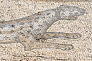 The Palace of the 'Bird Mosaic' a 14.5 x 16m floor of a villa dating to the Byzantine period, 6-7th century CE. Caesarea, Israel detail