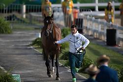 Veniss Pedro, BRA, Quabri de L Isle<br /> Olympic Games Rio 2016<br /> © Hippo Foto - Dirk Caremans<br /> 12/08/16
