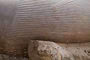 Detail: Colossus of Rameses II in the open air Mit Rahina Museum, Al Badrashin, Giza Governate, Egypt.
