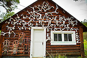 10 AUGUST 2011 - ALPINE, AZ: A cabin decorated with sleds and elk antlers on a ranch in the White Mountains of eastern Arizona. The area receives several feet of snow per year and is popular with skiers and hunters.    PHOTO BY JACK KURTZ