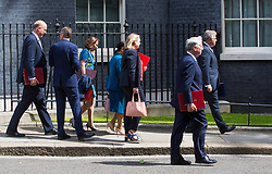 London, July 18th 2017. In a clear demonstration of unity with a cabinet that has seemed to be split over Brexit and other issues,  Government ministers, L-R Transport Secretary Chris Grayling, Chief Whip (Parliamentary Secretary to the Treasury) Gavin Williamson, Lord Privy Seal and Leader of the House of Lords Baroness Natalie Evans, International Development Secretary Priti Patel, Defence Secretary Michael Fallon and Minister of State for Immigration Brandon Lewis  leave the last cabinet meeting together before the Parliamentary summer recess at Downing Street in London.